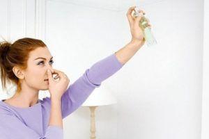 В доме пахнет сыростью? Правильная вентиляция своими руками