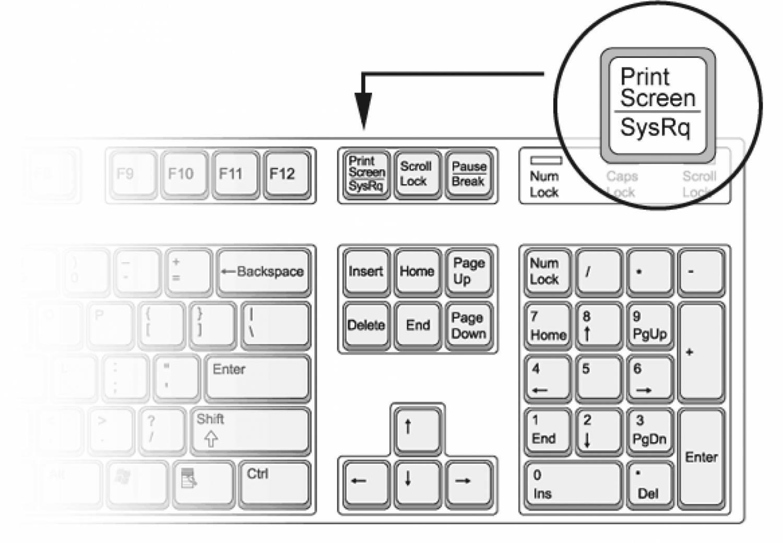 Как сделать скриншот на компьютере Простой способ🔴 Как сделать скриншот на компьютере Простой способ