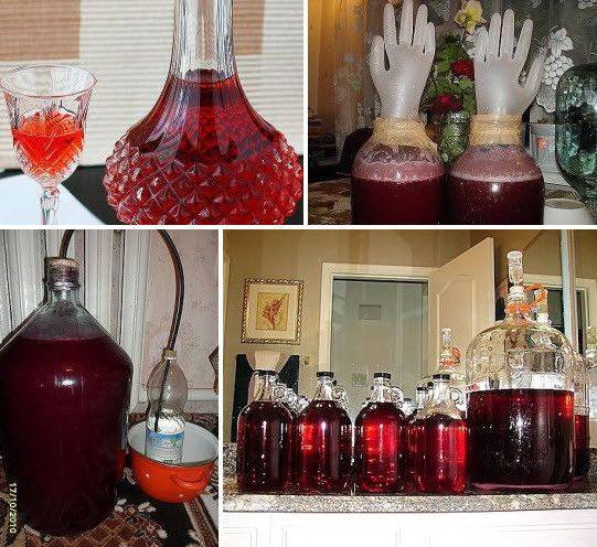 Вино из старого варенья суперрецепт🔴 Вино из старого варенья суперрецепт
