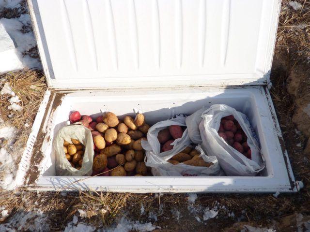 Что можно сделать из старого холодильника? 3