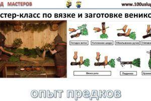 мастер-класс по вязке и заготовке веников