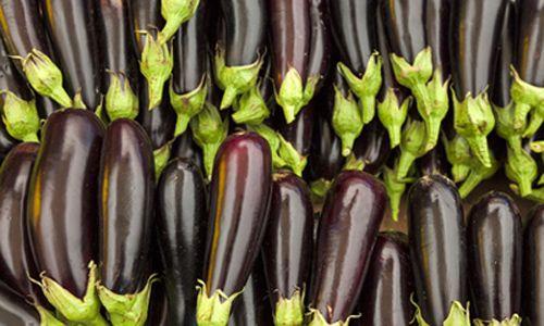Баклажаны в мультиварке – полезные рецепты для мультиварки
