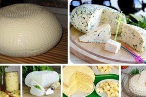 15 рецептов домашнего сыра