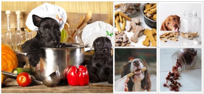Как сделать печенье для собак - полезное, простое и вкусное